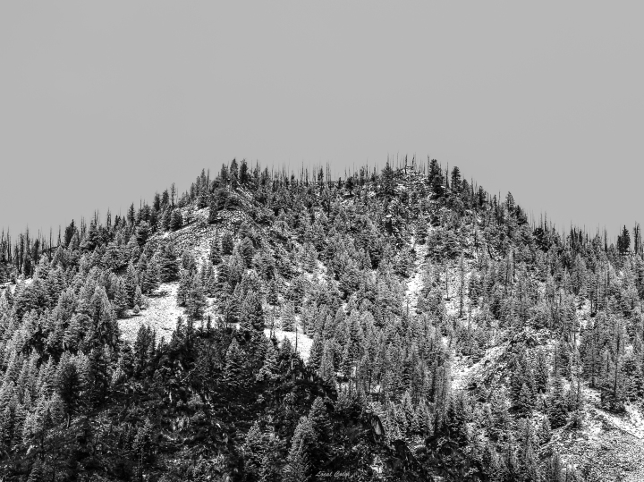 20171008-van meter w- morning snow bw